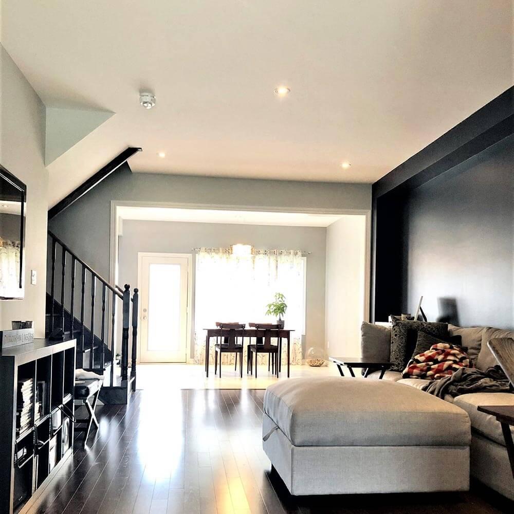 Vaughan living room painter